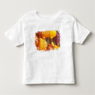 Vietnam, Hoi An Large lanterns, souvenirs Toddler T-Shirt