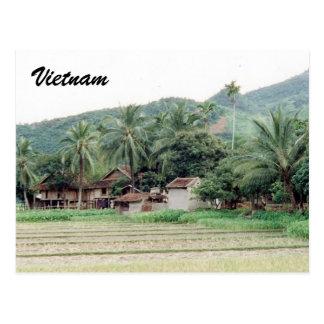 vietnam rice paddies postcards