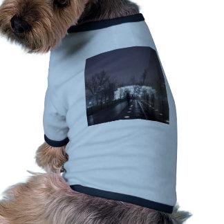 vietnam veterans memorial lincoln memorial dog clothes