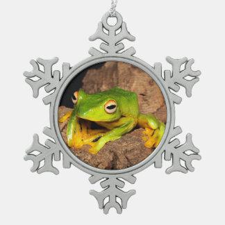 Vietnamese Black-Webbed Gliding Frog Pewter Snowflake Decoration