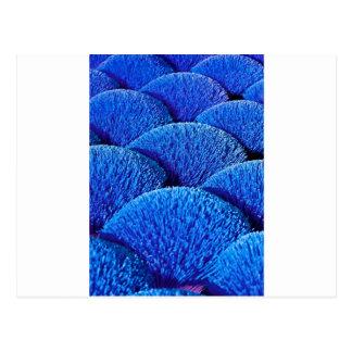 Vietnamese joss sticks in blue postcard