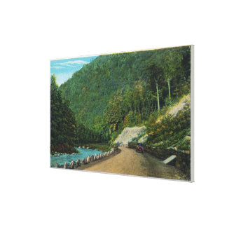 View Along Cold River of Eastern Slope of Canvas Print