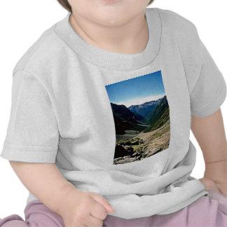 View down Hopeless Creek, Nelson Lakes National Pa Tshirt