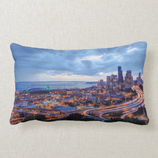 View from Beacon Hill, Pacific Med Center Lumbar Cushion