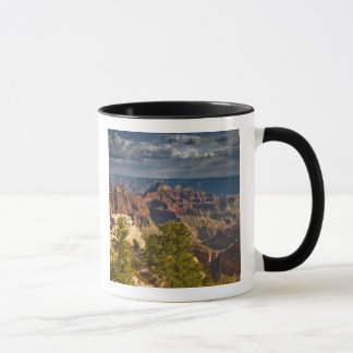 View from North Rim Visitor Center - Grand Mug