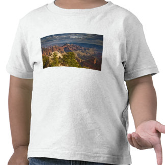 View from North Rim Visitor Center - Grand Shirt