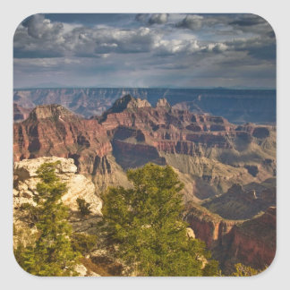 View from North Rim Visitor Center - Grand Square Stickers
