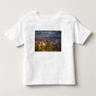 View from North Rim Visitor Center - Grand T-shirt
