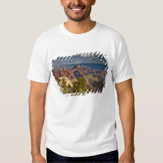 View from North Rim Visitor Center - Grand T Shirts