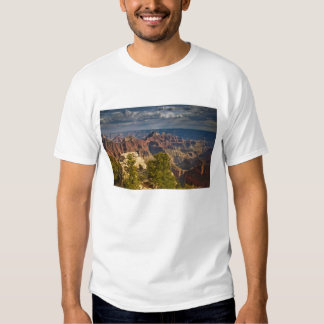 View from North Rim Visitor Center - Grand T-shirts