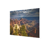 View from North Rim Visitor Centre - Grand Canvas Prints