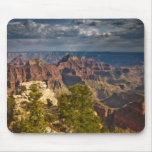View from North Rim Visitor Centre - Grand Mouse Mat