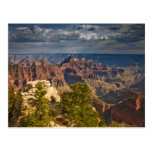 View from North Rim Visitor Centre - Grand Postcard