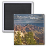 View from North Rim Visitor Centre - Grand Square Magnet