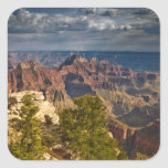 View from North Rim Visitor Centre - Grand Square Sticker