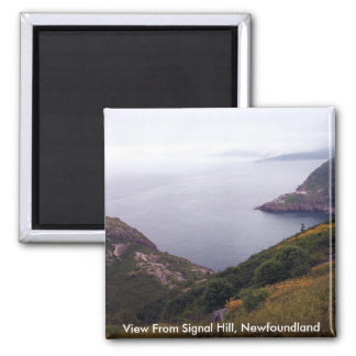 View From Signal Hill 1 Magnet