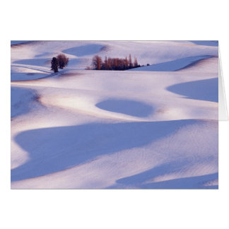 View from Steptoe Butte of rolling hills covered 2 Card