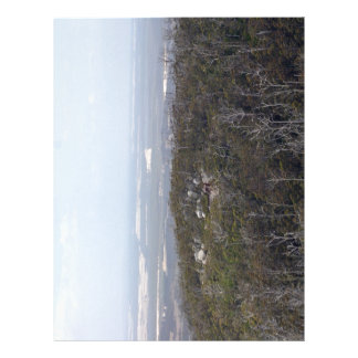 View from the Castle Rock Flyer