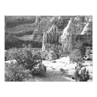 View from the Rim Trail Photographic Print
