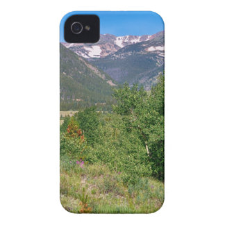 View From Tolland Colorado iPhone 4 Cases