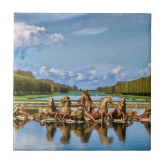 View From Versailles, France, Tile