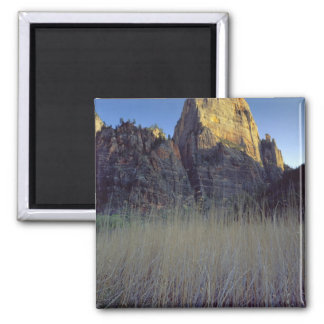 View from Virgin River flood plain, Zion Canyon Square Magnet