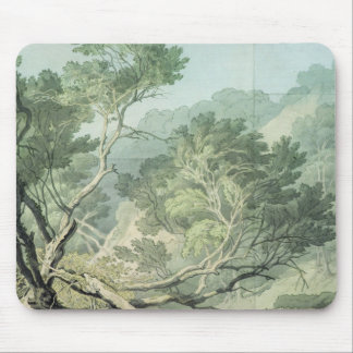 View near Fordlands, Exeter Mouse Mat