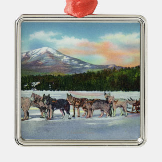 View of a Dogsled Team on Mirror Lake Christmas Ornament