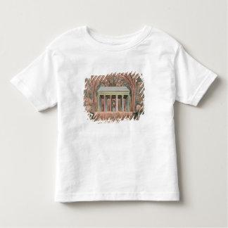 View of a firework display toddler T-Shirt