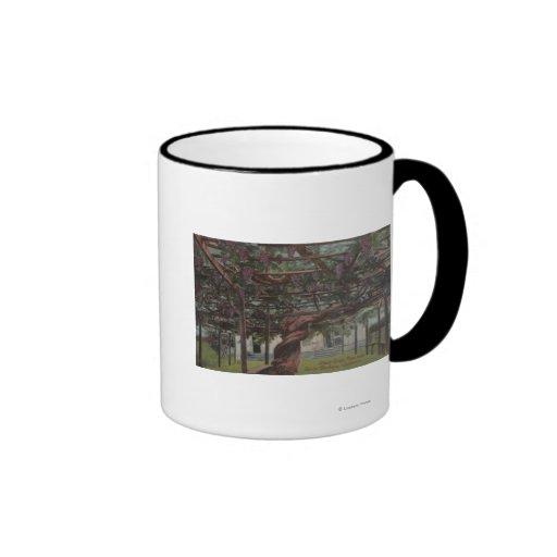 View of a Giant Grape Vine Coffee Mug