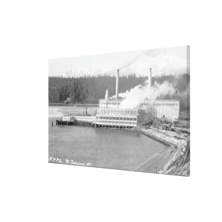 View of a Paper Plant Canvas Print