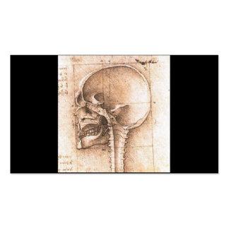 View of a Skull by Leonardo Da Vinci c. 1489 Pack Of Standard Business Cards