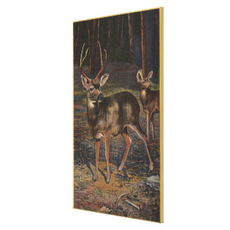 View of a Wild Buck & Doe Canvas Print