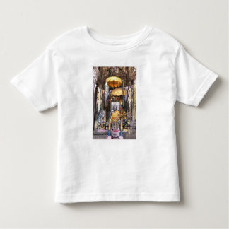View of altar area inside Buddhist temple, Toddler T-Shirt