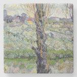 View of Arles, 1889 Stone Beverage Coaster