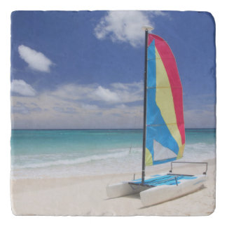 View Of Beach With Sailboat Trivet
