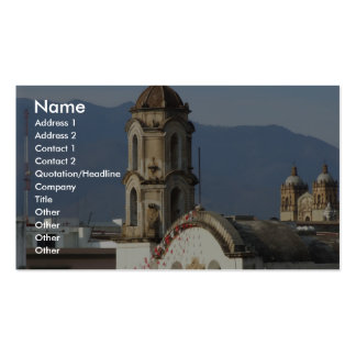 View Of Beautiful Cathedral Pack Of Standard Business Cards