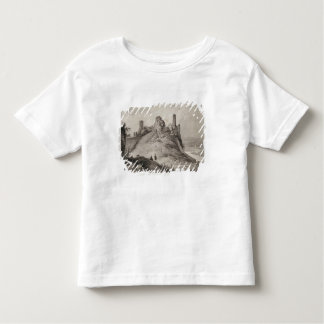 View of Berwick Castle Toddler T-Shirt