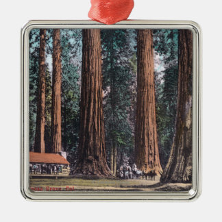 View of Big Trees in Mariposa Grove Christmas Ornament