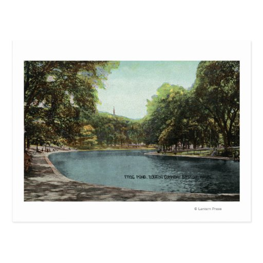 View of Boston Common Frog Pond # 2 Post Card