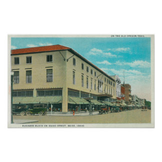 View of Business Block on Idaho Street Poster