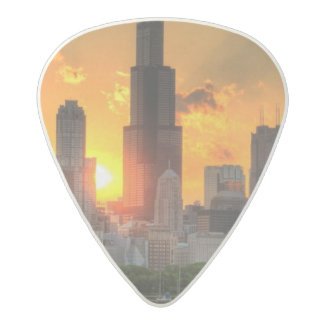 View of Chicago's skyline from  Adler Acetal Guitar Pick