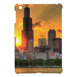 View of Chicago's skyline from  Adler Cover For The iPad Mini