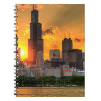 View of Chicago's skyline from  Adler Notebook
