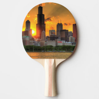 View of Chicago's skyline from  Adler Ping Pong Paddle