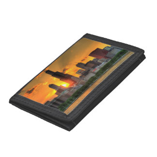 View of Chicago's skyline from  Adler Tri-fold Wallets