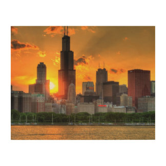 View of Chicago's skyline from  Adler Wood Canvas