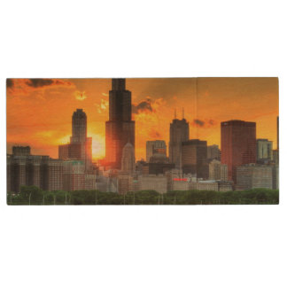 View of Chicago's skyline from  Adler Wood USB Flash Drive