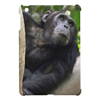 View Of Chimpanzee (Pan Troglodytes) In Tree iPad Mini Cover