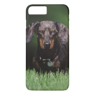 View of Dapple colored Dachshund iPhone 8 Plus/7 Plus Case